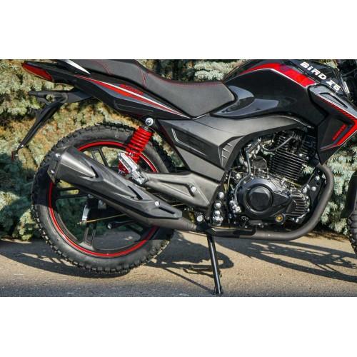 Bird X6 200 (Black)